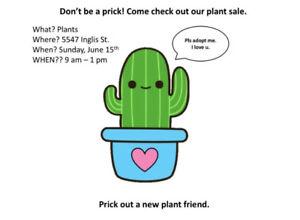 Indoor and Outdoor Plant Sale!