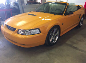 1999 MUSTANG CONVERTIBLE - 35th anniversary model