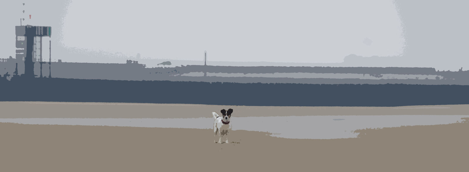 Jack Russell Shop