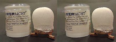 AUERLICHT Gas Light Mantle for Humphrey/Falks/Mr Heater Lights (7998748)-02 PCS