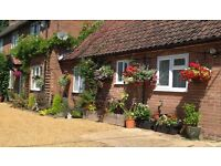 Holiday cottage for rent, secluded location but near main bus route, 1 double bed and private garden