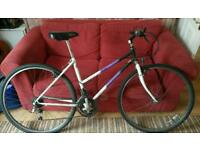Pioneer Spirit Womens bike