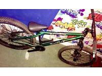 Saracen amplitude 1 jump bike