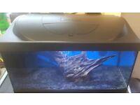 50ltre tetra aquarium fishtank full setup