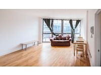 ***DSS accepted***Beautiful 1 bed luxury flat with communal garden****