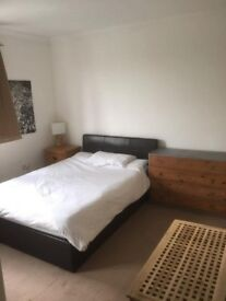 Double room in a friendly house share