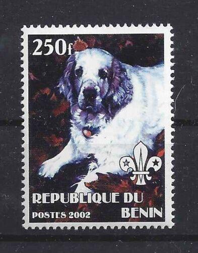 Dog Full Body Photo Study Postage Stamp CLUMBER SPANIEL Benin 2002 MNH