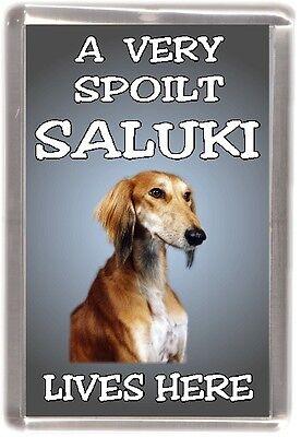"Saluki Dog Fridge Magnet  ""A VERY SPOILT SALUKI LIVES HERE"" by Starprint"