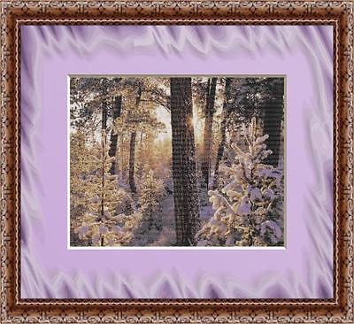 QUIET WINTER MORNING~DELICA BEAD PATTERN ONLY