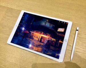 IPad Pro 10.5 256GB + Apple Pencil & sleeve + bungajungle
