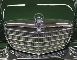 Mercedes Benz W111 Grille Moulding Trims with Clips 220 220S 220SE