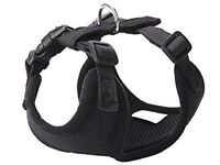 BRAND NEW harness for cat/ small dog/ puppy