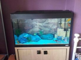 Fish Tank for sale £80.00