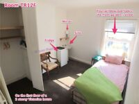 => Sunshine Room in Quiet, Mature Victorian House • 7 Min Walk to Town • Parking • Fibre WiFi