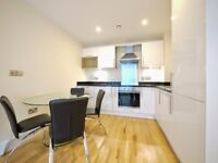 LOVELY SPACIOUS DOUBLE ROOM IN 1/2BED FLATSHARE BATTERSEA, GOOD FOR COUPLE, ALL BILLS INC.