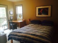 Room in Canmore Home