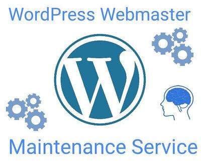 Wordpress Website Webmaster Maintenance Service - 10 Hours Per Month