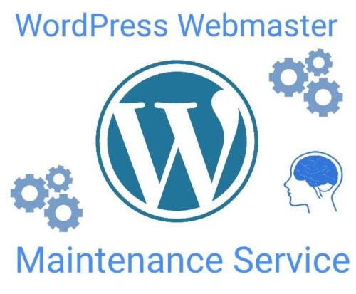 Wordpress Website Webmaster Maintenance Service - 3 hours