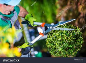 Black's Garden maintenance