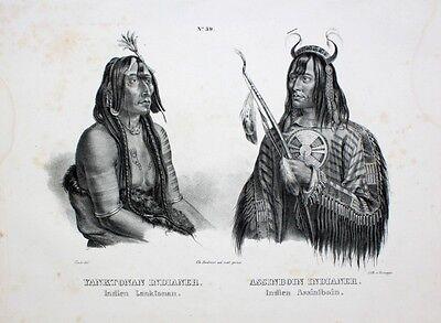 Karl Bodmer Indianer Assiniboine Yankton Medizinmann Bogen Native USA Häuptling