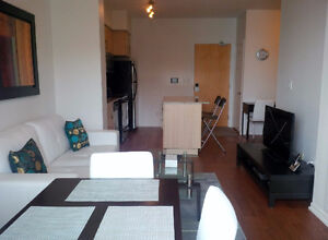 Oct 22: Furnished Downtown 1 Bed + den @ Maple Leaf Sq - Union