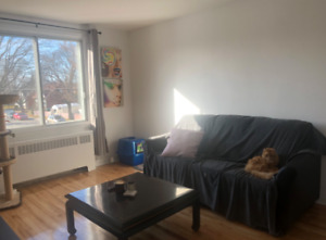 LOOKING FOR FEMALE ROOMMATE 5 1/2 UPPER DUPLEX