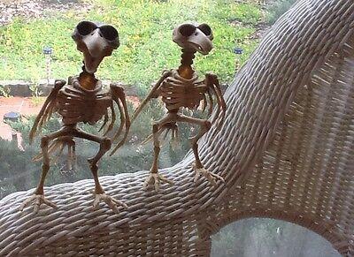 2 SKELETON BIRDS  creepy Scary Bones DEAD  HALLOWEEN Shindig Party Posable!