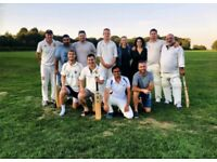 Cricket players wanted for friendly game this Sunday