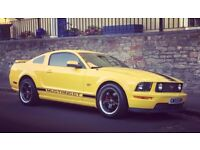 Ford Mustang 2006 GT Coupe 4.6L V8 - superb condition, low mileage