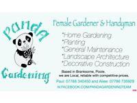 Female Gardener & Handyman
