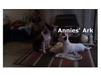 Professional Pet Care - Annies' Ark