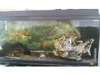 2 fish tanks with ornaments and lots more