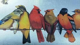 Birds on a plate