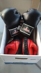 Boxing Gloves and Training Pads