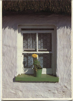 Alte Postkarte - An Irish Windowsill