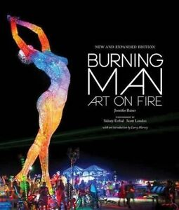 Burning Man: Art on Fire by Jennifer M. Raiser (Hardback, 2016)