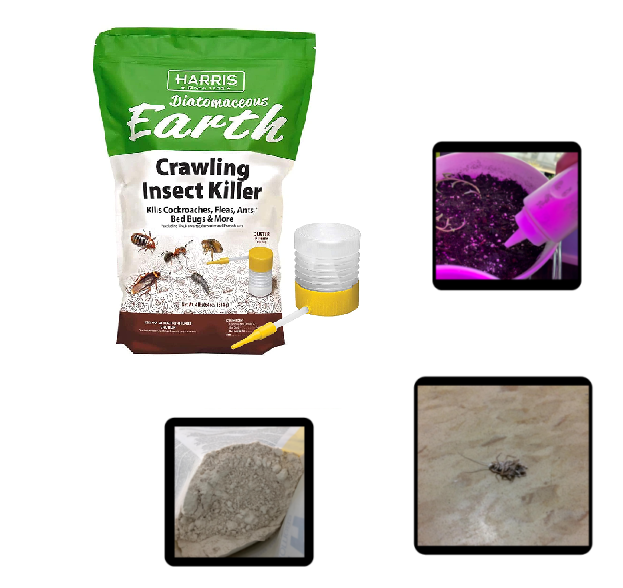 Safer Brand Diatomaceous Earth Bed Bug Flea Ant Crawling Ins