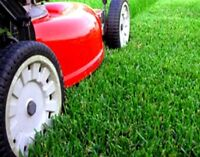 Lawn Care Cutting Services - SE and SW Calgary