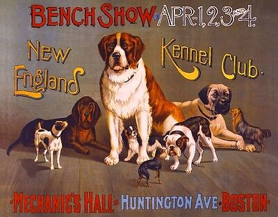 - 1890 New England Kennel Club Dog Dogs Boston Advertisement Vintage Poster Print