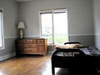Yonge / Cummer  Clean & Quiet  Room Rent