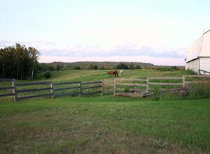 Farm for sale Gatineau Ottawa / Gatineau Area image 9