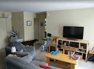 July 1st - All Inclusive 2 Bedroom Apartment Memorial Center