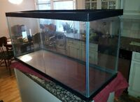 48 Gallon Aquarium/Critter Cage