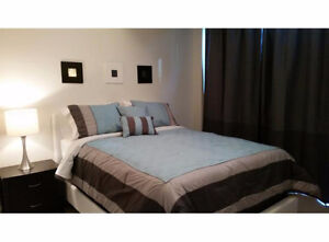 Furnished 2 Bedroom Condo Next to Ripley's Aquarium