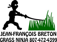 Grass Cutting, lawn care, flower bed cleaning, weeding