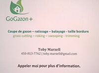 GoGazon + Tonte de Pelouse / Grassing Cutting Services