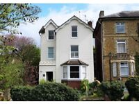 Stunning, 628sq ft 1 bed flat. Shared garden + Permit Parking. No pets. Partly furnished.
