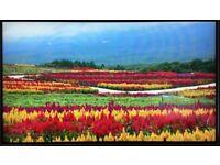 """LG 24mp88hv 24"""" 4 Side Borderless Monitor Full HD - Like New"""