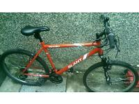For sale or Swap new bike