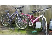 3 mountain type bikes for sale..spares or repairs..